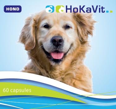 paardenmelk capsules hond hotspot allergie atopie darmklachten